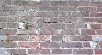 Francis Brickwork5