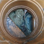Plumber Quick blocked-drain1